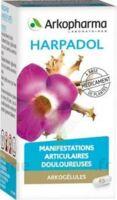 ARKOGELULES HARPAGOPHYTON, 150 gélules à Pessac