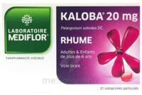 KALOBA 20 mg Cpr pell Plq/21 à Pessac