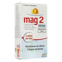 Mag 2 Stress 30 comprimés à Pessac